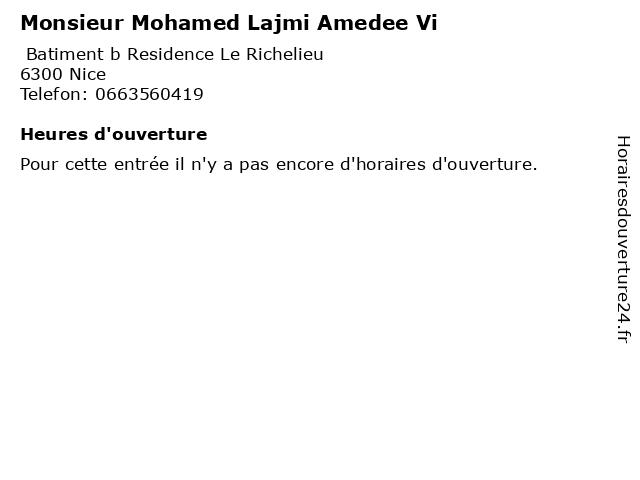 Monsieur Mohamed Lajmi Amedee Vi à Nice: adresse et heures d'ouverture