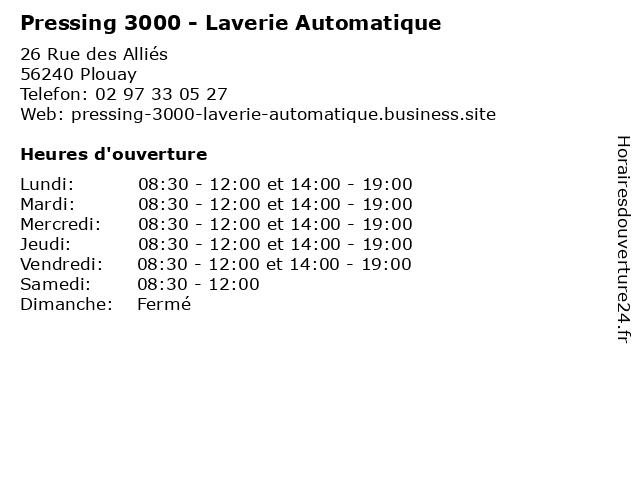 Pressing 3000 - Laverie Automatique à Plouay: adresse et heures d'ouverture