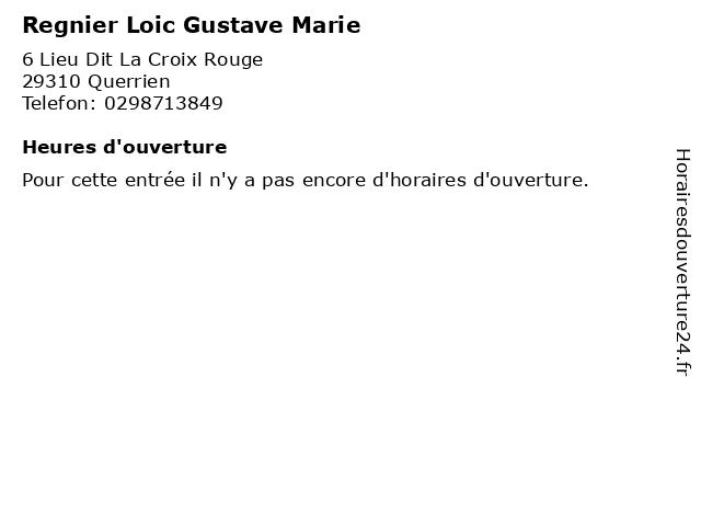 Regnier Loic Gustave Marie à Querrien: adresse et heures d'ouverture