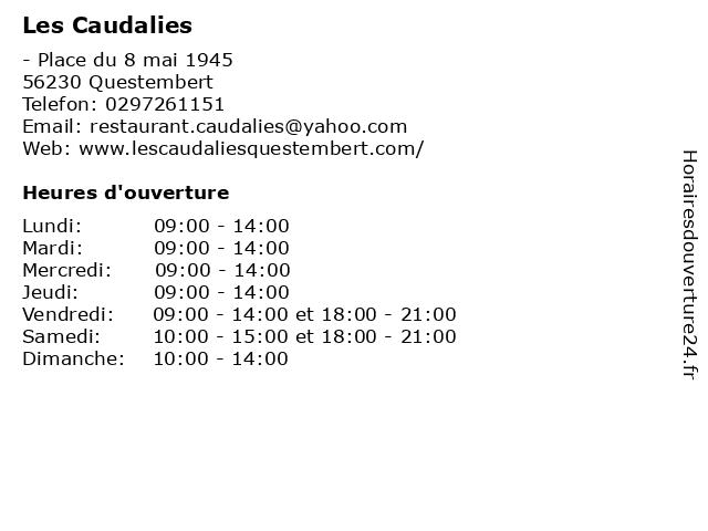 Les Caudalies à Questembert: adresse et heures d'ouverture