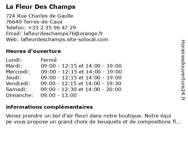 ᐅ La Fleur Des Champs - Horaires d'ouverture | 724 Rue ...